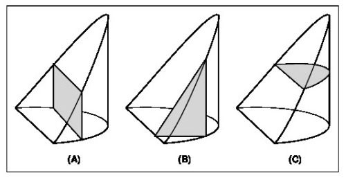 Figure 2: Cross-sections of an ungula perpendicular to (A) the x axis, (B) y axis and (C) z axis.