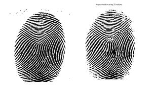 Original fingerprint image (left panels) and compression to rank 20 (from website of John Burjardt, FSU).