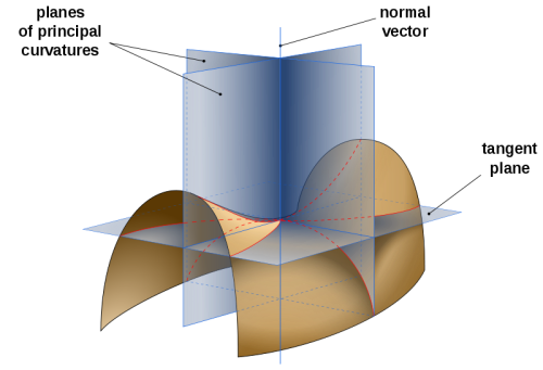 Saddle surface with tangent plane and normal planes in directions of principal curvatures [Wikimedia Commons].