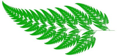 Barnsley Fern after one million iterations.