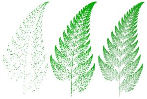 Barnsley Fern generated by Chaos Game. Left to right: 1000, 10 000 and 100 000 points.