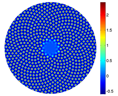 Pseudocolor plot of auxin concentration (from Pennybacker, Matthew and Alan C. Newell, 2013).