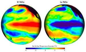 Patterns of sea surface temperature during El Niño and La Niña episodes. Image courtesy of Climate.gov.
