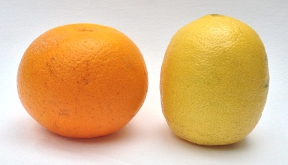 Is the Earth oblate like an orange (Newton) or prolate like a lemon (the Cassinis)?