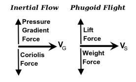 InertialFlow-PhugoidFlight