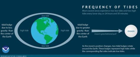 Tides-NOAA