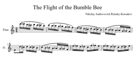 Flight-of-BumbleBee-Music