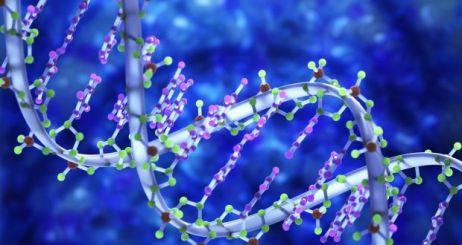 DNA-colour