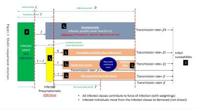SEIR-Structure