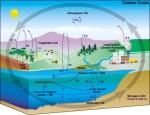 Carbon-Cycle-NASA